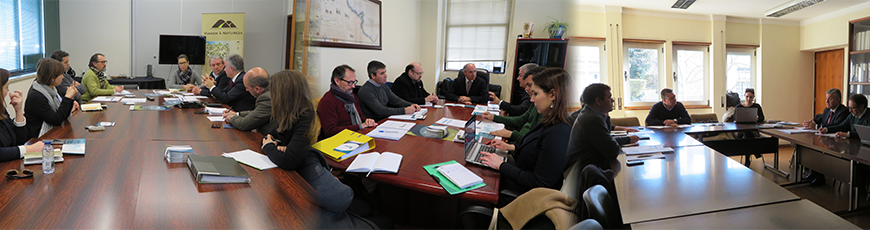 Reuniões do Projeto EMER-N